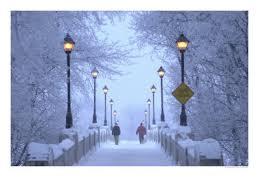 winter dark 2