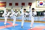 "The Korean Tae Kwon Do team for the 2012 Olympics.  My legs don't stretch quite this far yet.  ""Hey teach, is it OK if I just kick him in the knee?"""